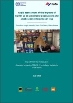 Rapid assessment of the impacts of COVID-19 on vulnerable populations and small-scale enterprises in Iraq